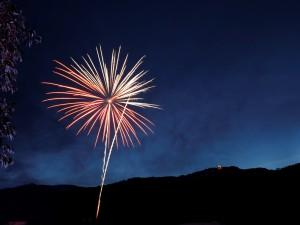 Firework erupting in the night sky