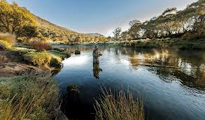 Fly Fishing in the Snowy Mountains