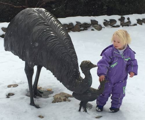 kids-activities-thredbo-emu