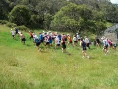 runners-week