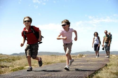 Thredbo activities - Mt Kosciuszko Track