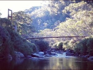 Thredbo-Valley-TRack-Thredbo-River