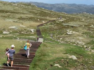 Beautiful nature trails at Thredbo