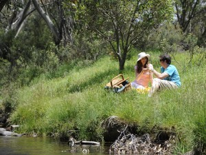 A couple enjoying their picnic on the riverside
