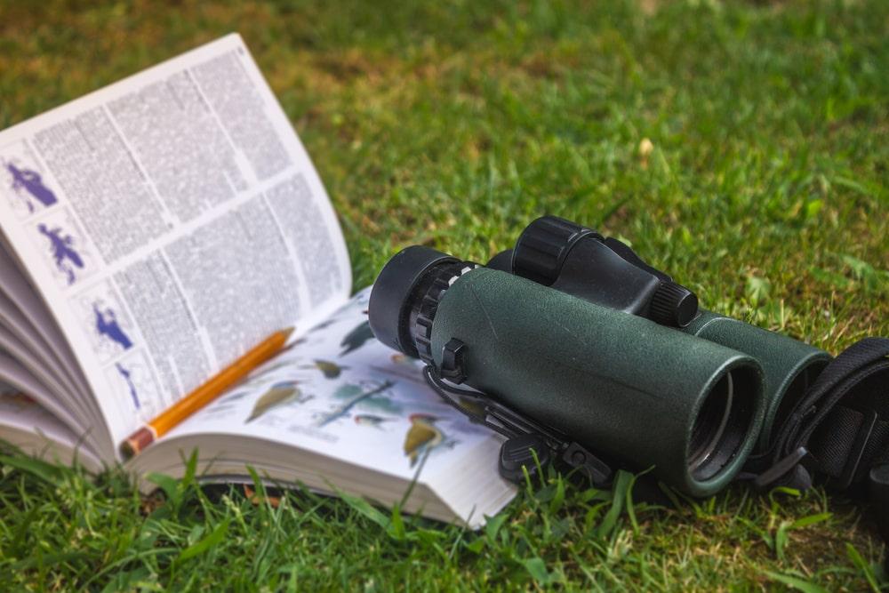 an open book beside a camera