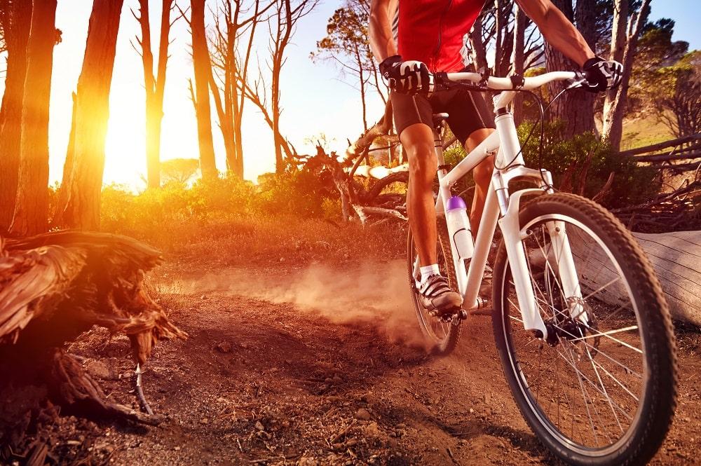Mountain Bike Gear: Tips & Tricks for Mountain Bike Armour