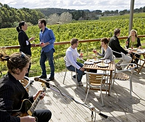 canberra-winery