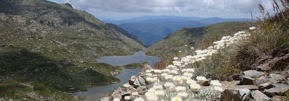 Lake near Thredbo alpine apartments
